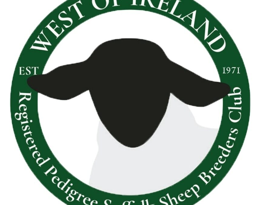 1971-2021 CELEBRATING 50 YEARS OF SUFFOLK BREEDING IN THE WEST OF IRELAND